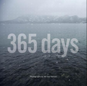 365 days in a city